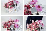 سبد گل کالسکه ای، هدیه ای شیک برای تولد نوزاد
